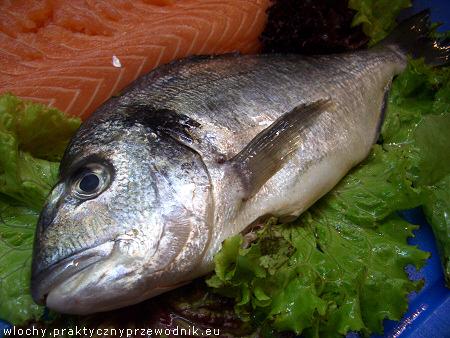 Ryby - łosoś i dorada